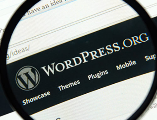 What is a WordPress Developer?