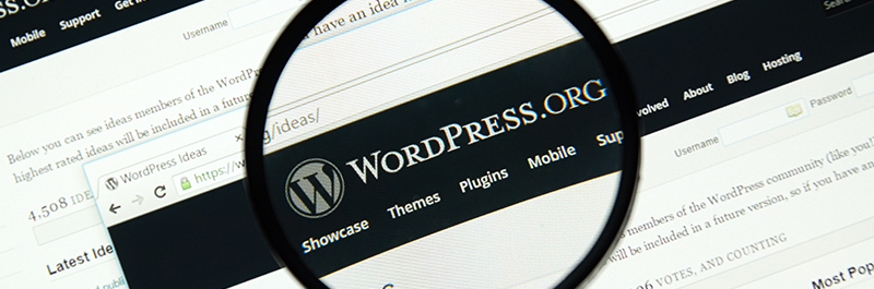 WHAT IS A WORDPRESS DEVELOPER