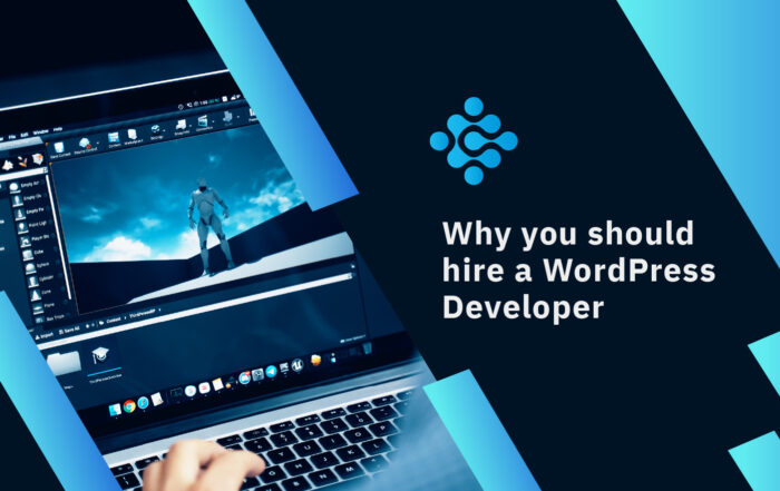 Why you should hire a Word Press Developer