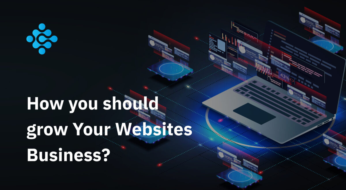How you should grow Your Websites Business