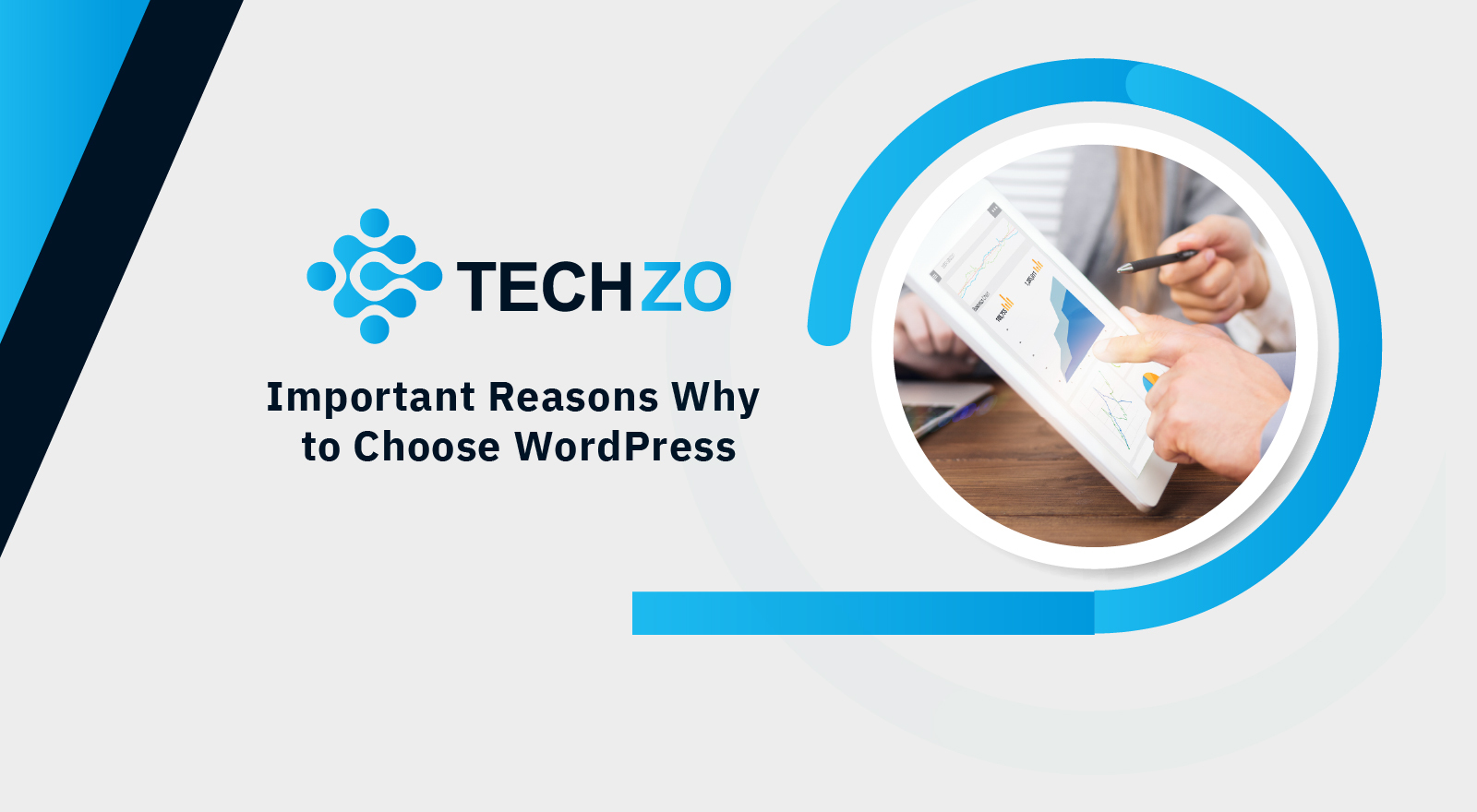 Important Reasons Why to Choose WordPress